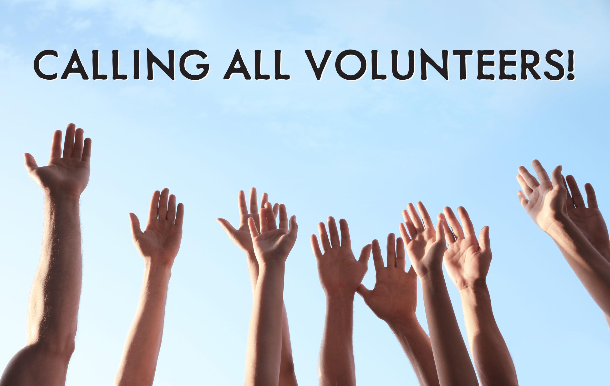 volunteers image